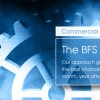 The BFS Model